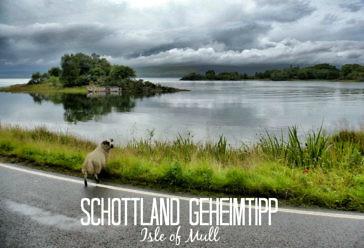 Geheimtipp für Schottland: Die Isle of Mull