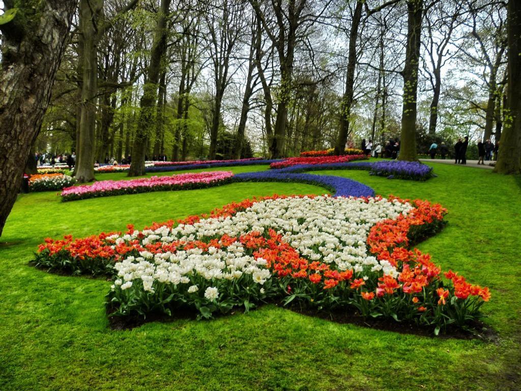 Tulpenblüte in Holland erleben: Keukenhof