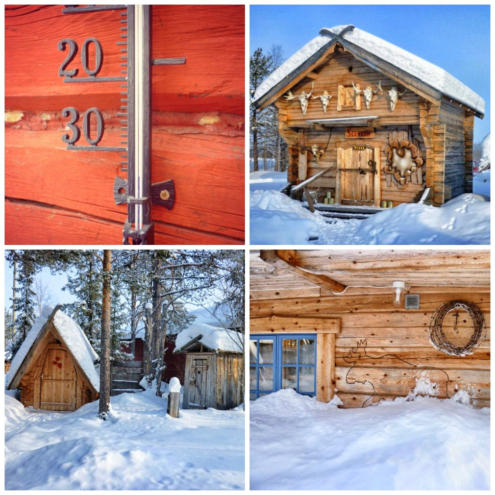 Elchpark in Lappland