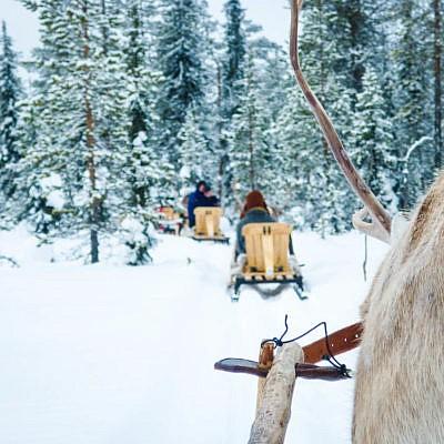 Im Wildnisdorf in Lappland Rentiere, Iglus & kein Strom