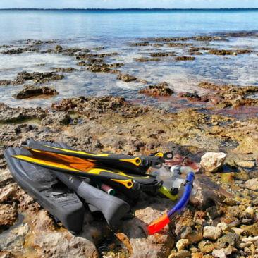 Unser privater Schnorchelausflug in Playa Larga