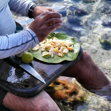 Muschelfleisch direkt aus dem Meer - frischer geht es nicht