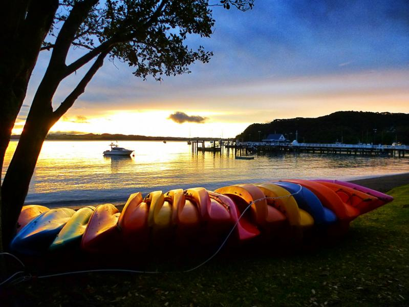 Neuseeland Twitter: Maori In Neuseeland: Waitangi, Haka Und Hongi