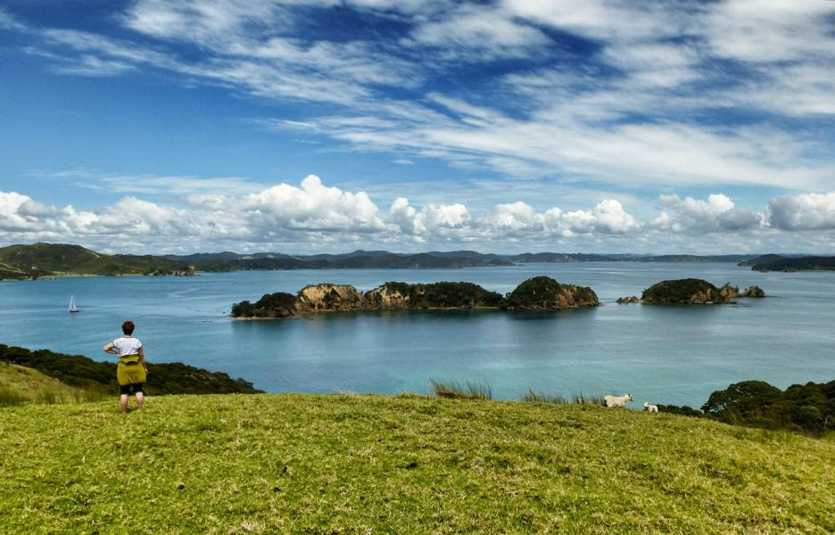 Segeln in der Bay of Islands (21)