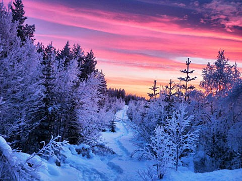 Schwedisch Lappland Highlights