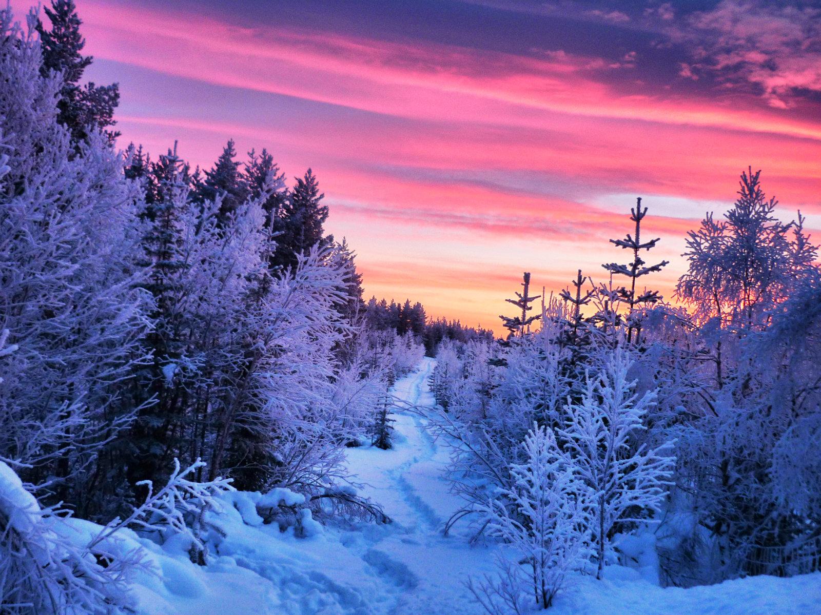 Schwedisch Lappland Highlights - Abendstimmung in Lappland