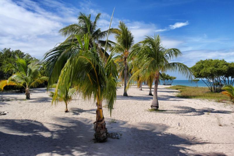 Trinidad Highlights 1