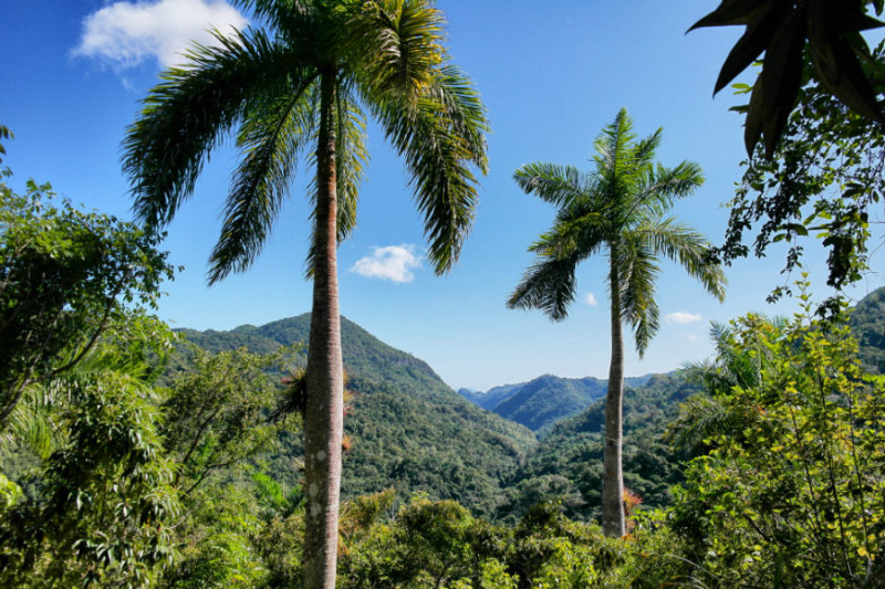 Trinidad Highlights 2