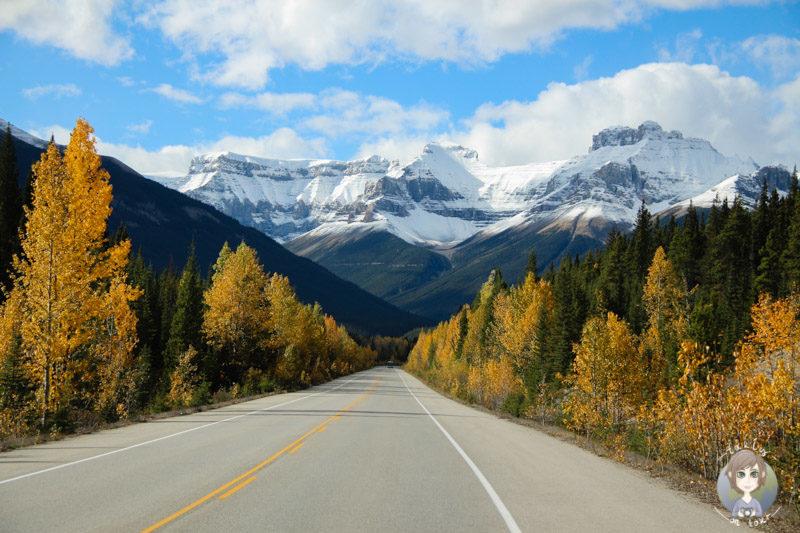 Kanada Rundreise in 2 Wochen