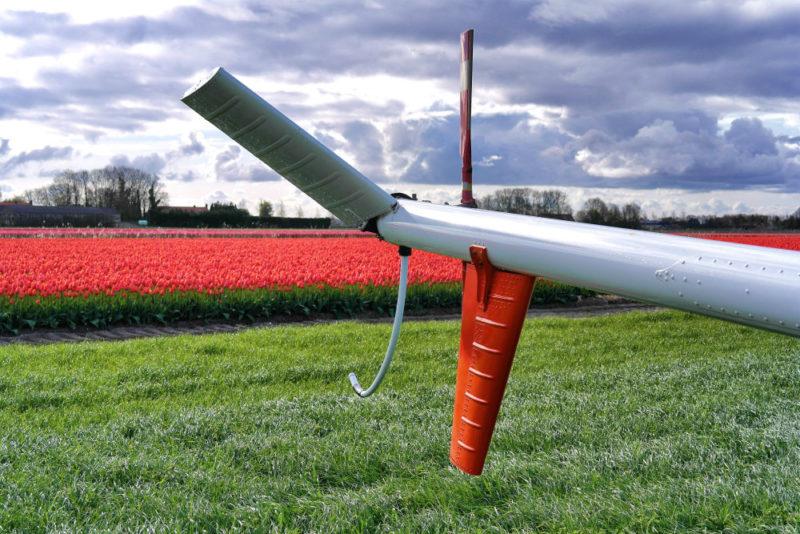Helkopterflug über die Tulpenfelder (23)