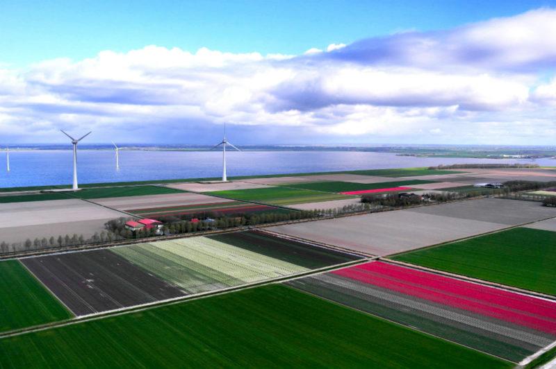 Helkopterflug über die Tulpenfelder (5.2)