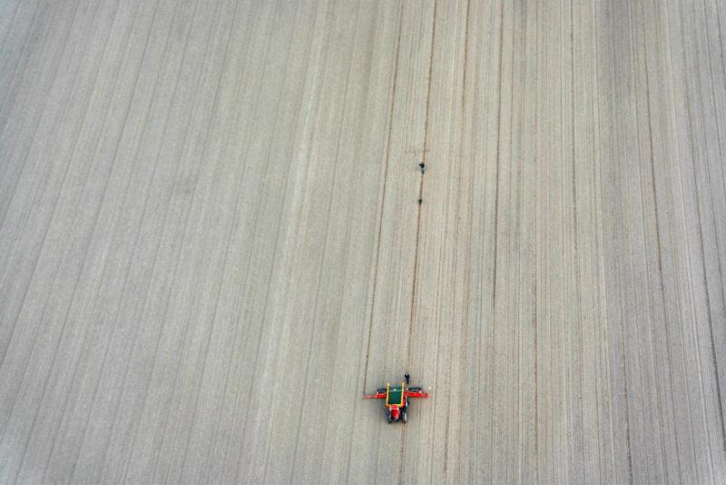Helkopterflug über die Tulpenfelder (9.1)