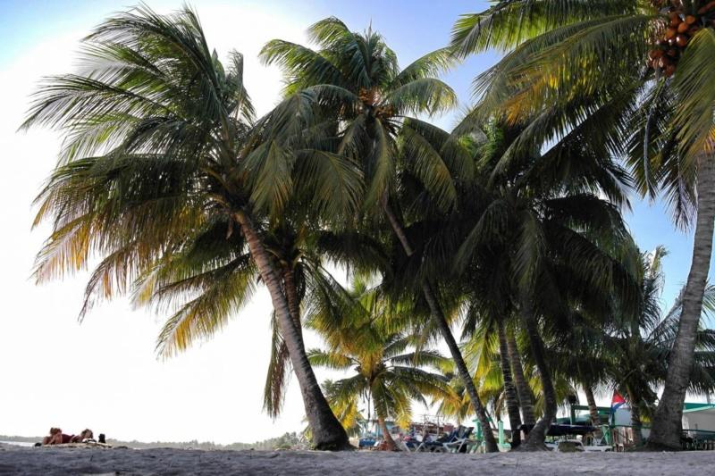 Geheimtipp Playa Larga oder der perfekte Tag auf Kuba (17)