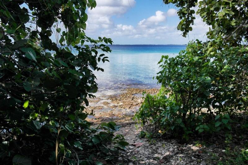 Geheimtipp Playa Larga oder auch: Der perfekte Tag auf Kuba