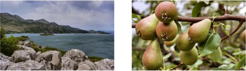 Kanufahren auf Montenegros Skutarisee 2