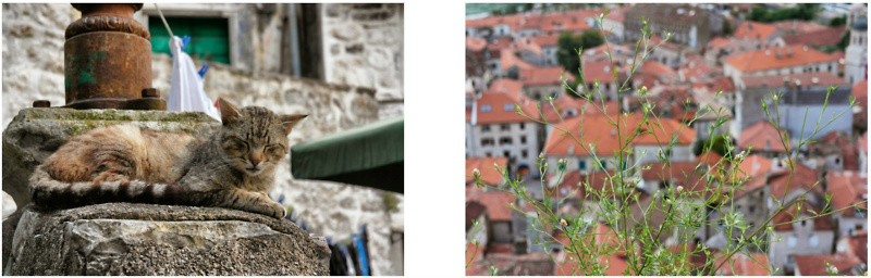 Dubrovnik & Montenegro Road Trip (140)