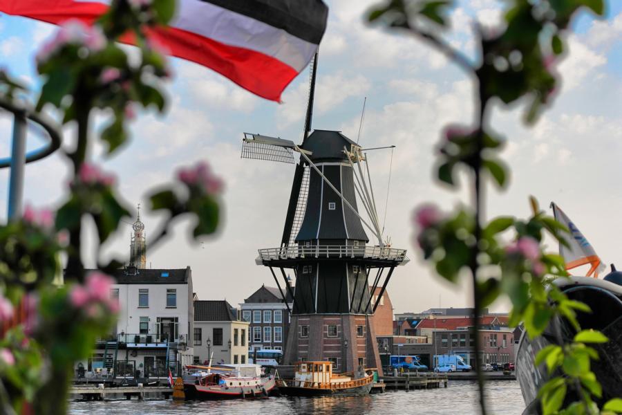 Die schönsten Ausflugsziele in Holland - Haarlem