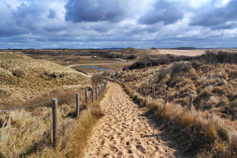 Die schönsten Ausflugsziele in Holland - Kennemerduinen
