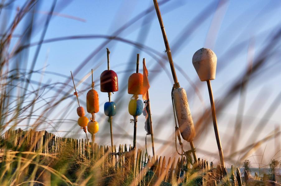 Die schönsten Ausflugsziele in Holland - Zandvoort