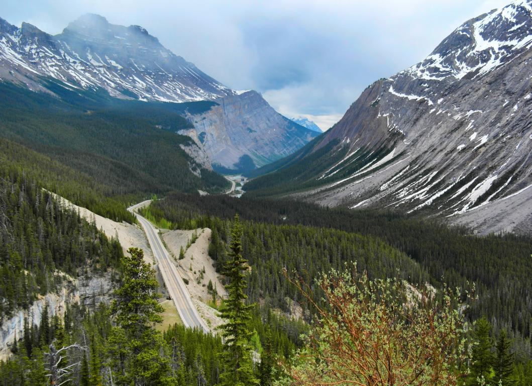 Westkanada Highlights in 2 Wochen - Icefields Parkway