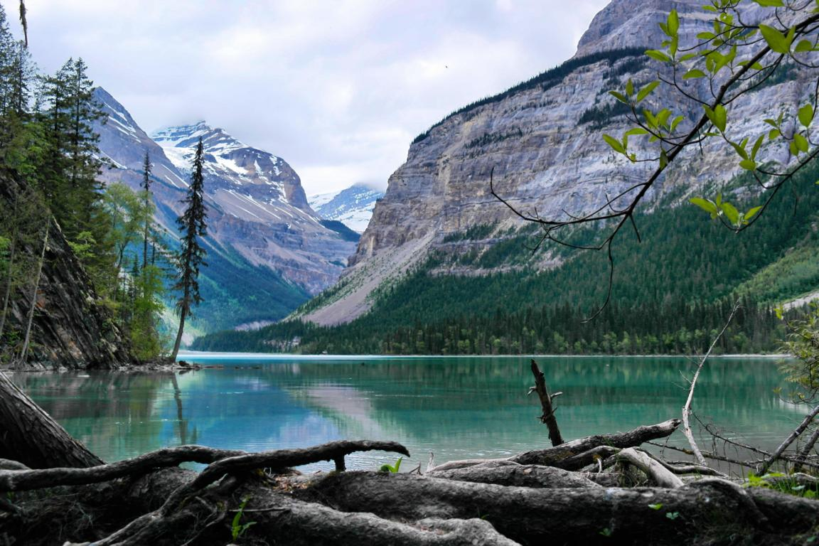 Westkanada Highlights in 2 Wochen - Kinney Lake
