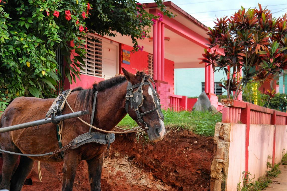 reisevorbereitung-kuba-dorfidylle