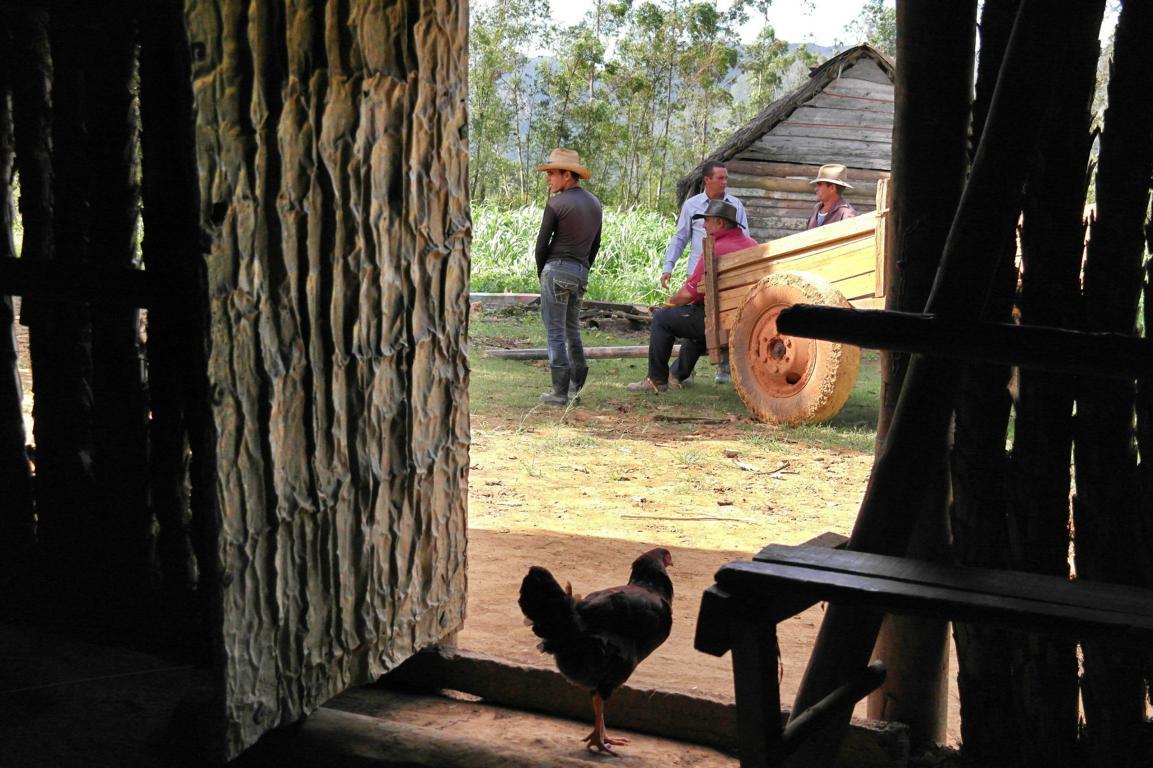 reisevorbereitung-kuba-kubanische-cowboys