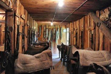 Ranchurlaub in Kanadas Cowboy Country