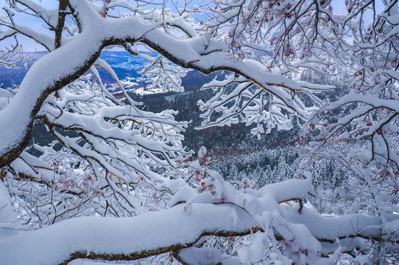 Besondere Ausflugsziele in Baden-Würtemberg - Schneeschuhwandern auf der Schwäbischen Alb