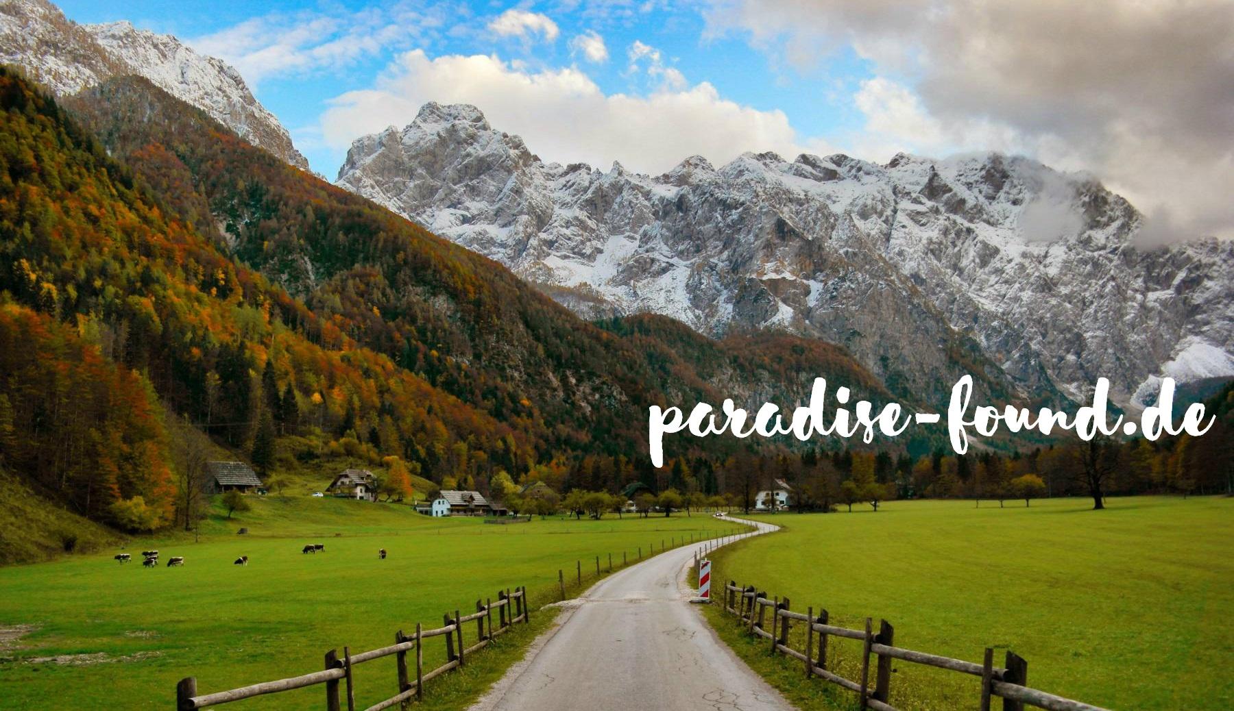 Kooperationen mit paradise-found.de