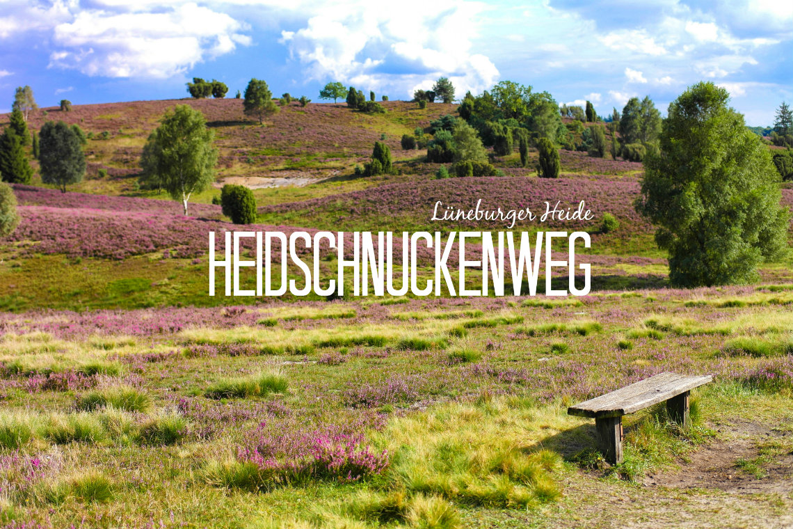 wanderwege in der lüneburger heide