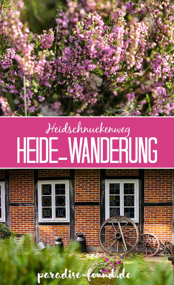 Deutschlands schönste Heide-Wanderung: Der Heidschnuckenweg