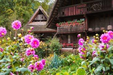 Schwarzwald wie anno dazumal - Vogtsbauernhof (1)
