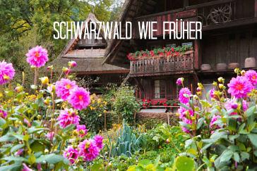 Schwarzwald wie anno dazumal Zuberbad, Ziegen-TV und das einfache Leben