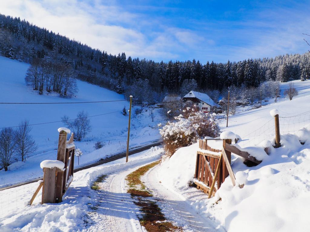Das perfekte Adventswochenende in Baden-Württemberg