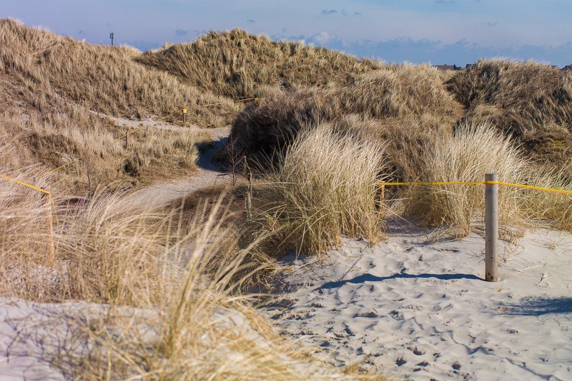 Gegen den Wind Insider-Tipps für St. Peter-Ording - Dünen in St. Peter-Ording