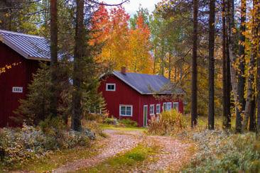 Indian Summer in Lappland - Aktivurlaub im herbstlichen Lappland