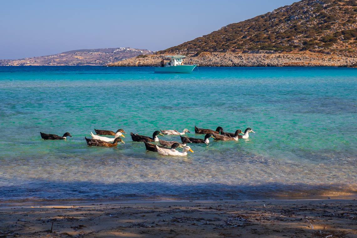 Griechenland Geheimtipp: Gastfreundschaft & nachhaltiger Tourismus auf der Insel Lipsi
