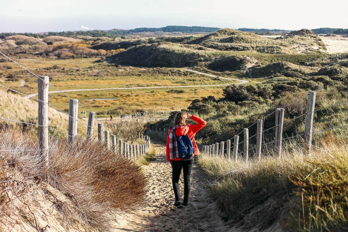 Besondere Ausflugsziele in Holland: Kennemer Duinen