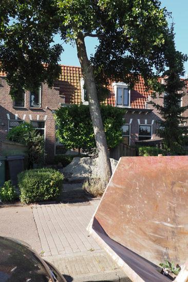 8 Jahre in Holland