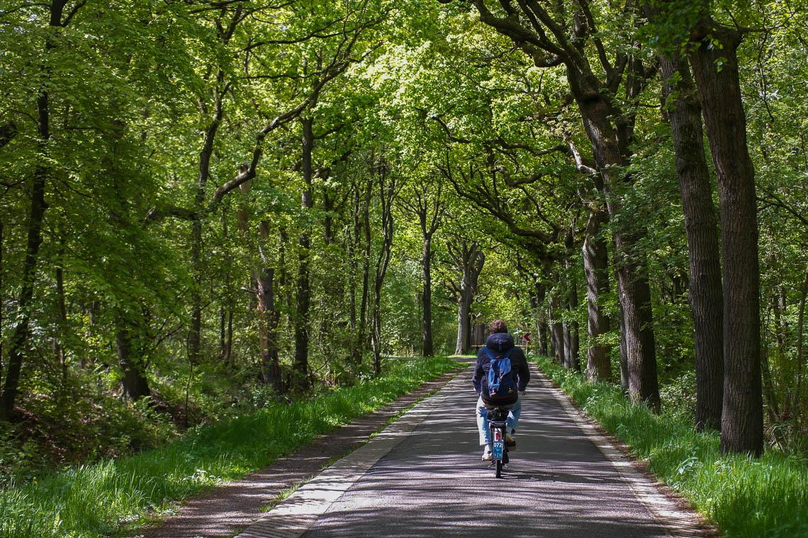 Besondere Ausflugsziele in Friesland: Solex-Tour ums Slotermeer