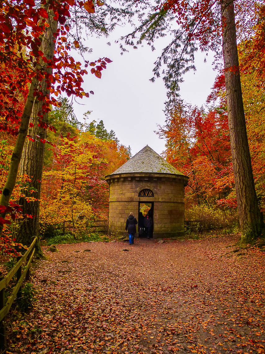 Herbstwandern in Schottland - Braan Walk @ The Hermitage, Dunkeld