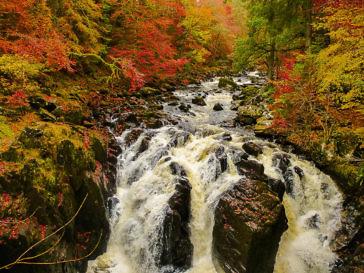 Herbstwandern in Schottland - Braan Walk @ The Hermitage, Dunkeld