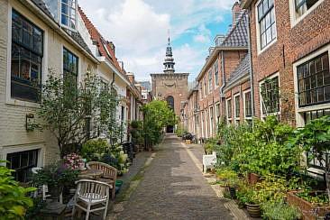 Grüne Sträßchen in Haarlem