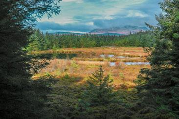 Isle of Arran Wandern