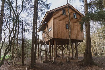 Naturhäuschen in Holland Der Traum vom Baumhaus in Drenthe