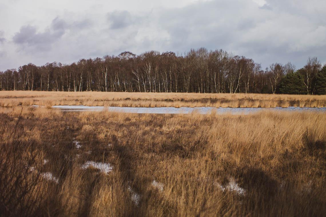Nationalpark Dwingerveld