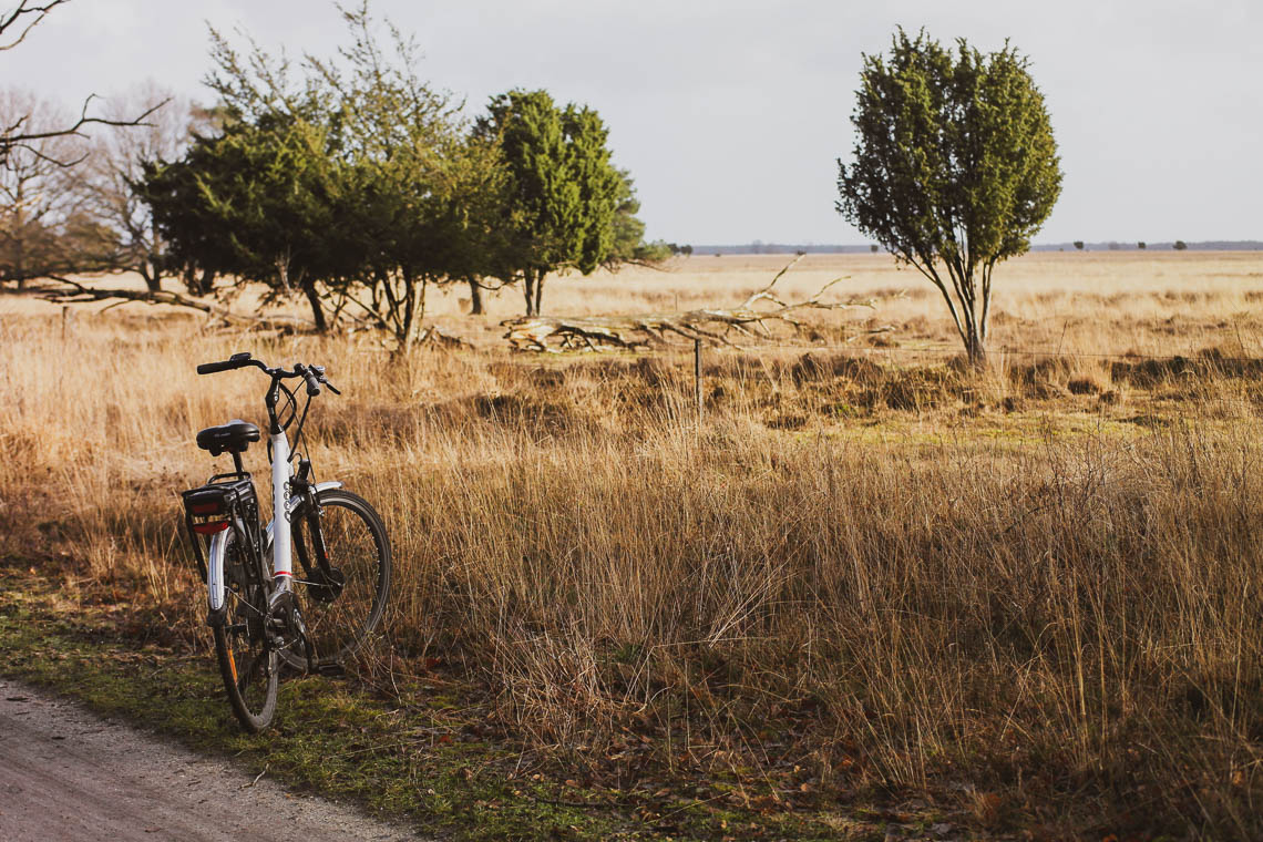 Radtour im Dwingerveld Nationalpark