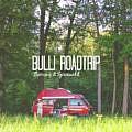 Bulli Roadtrip im Spreewald & Fläming: Route, Tipps & Ausflugsziele