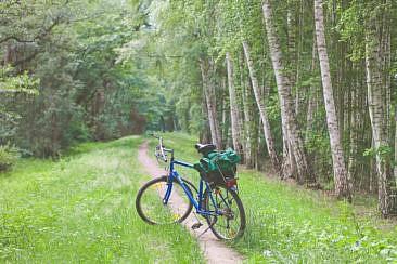 Spreewald-Radtour